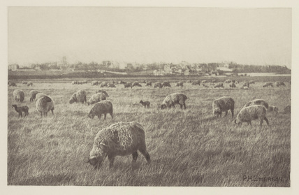 'On Southwold Marshes', 1887.