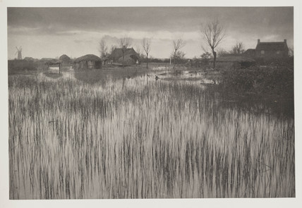 'A Rushy Shore', 1886.