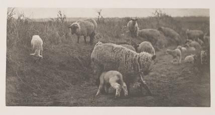 'A March Pastoral', 1887.