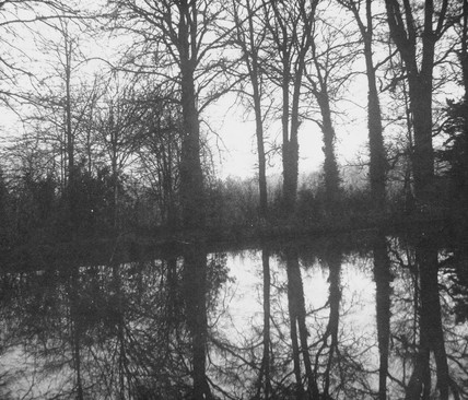 'Trees with reflection', c 1843.