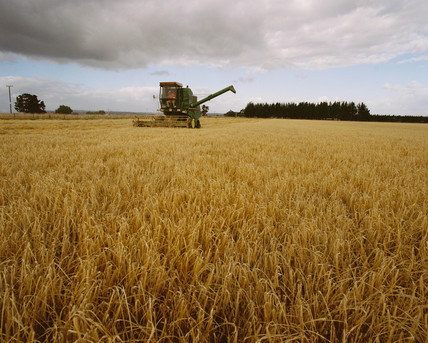 Combine harvester, New Zealand, March 1997.