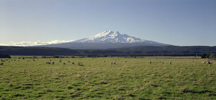 Farmland in the central North Island, New Zealand, September 1977.