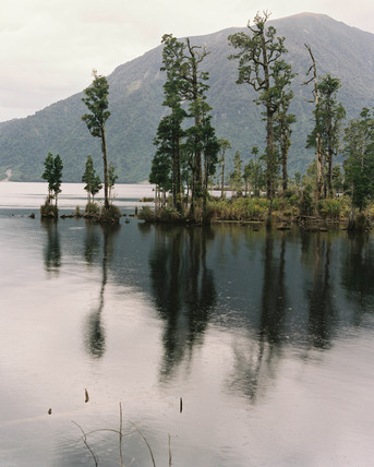 Lake Brunner, New Zealand, 1994.