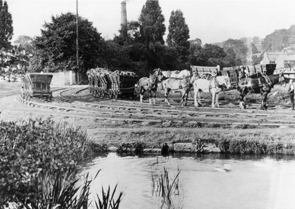 Horses hauling coal wagons, Derby Canal, Derbyshire, c 1908.