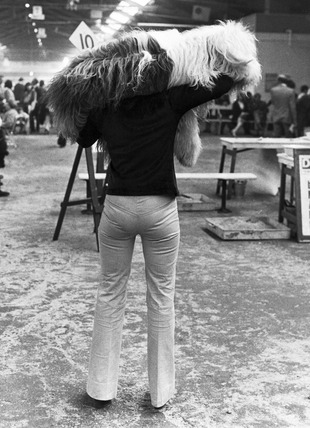 Dog and owner, Manchester Dog Show, Belle Vue, March 1974.