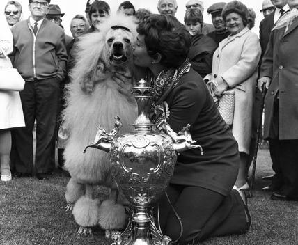 Winner of the Blackpool Dog Show, 25 June 1970.