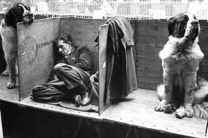 Sleeping exhibitor, Manchester Dog Show, March 1966.