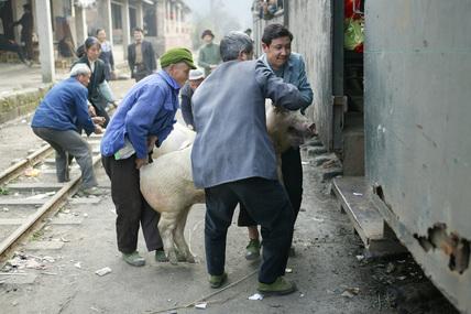 Bagou, (Baishi Railway) Sichuan province, China, 2003