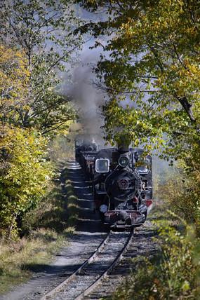 Coal train near Huanan, Heilongjiang province, China, 2004