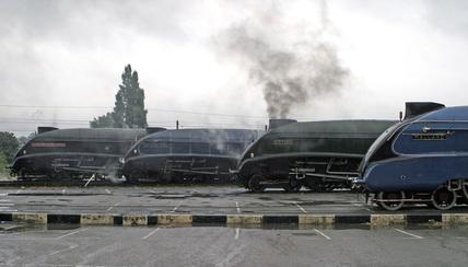 A4 Locomotive Great Reunion Event