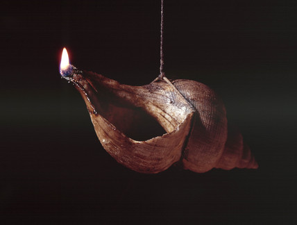 Sea shell used as floating wick lamp from Thurso, Scotland, c 18th century.