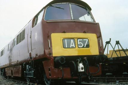 'Western Fusilier', C-C no D1023, clas 52,