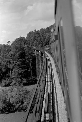 Castle Hill Viaduct, Barum train. 4 August 1951