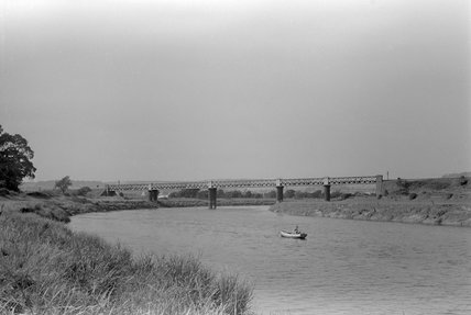Taw Viaduct, looking downstream from west bank. 30 July, 1951.