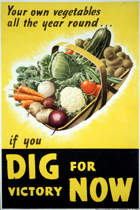 Your Own Vegetables