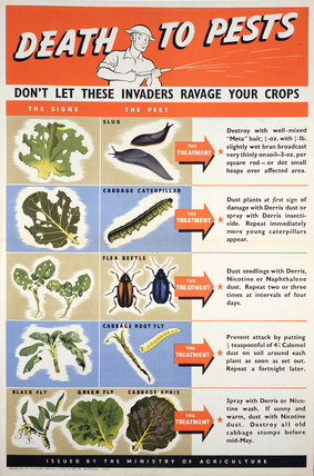 Death To Pests