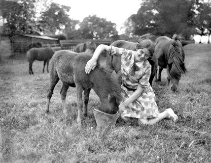 Woman breeds Shetland ponies on Hertfordshire farm - 14-August-1929