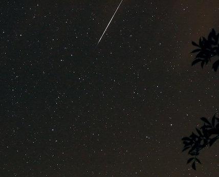 A Perseid meteor, by Jamie Cooper.