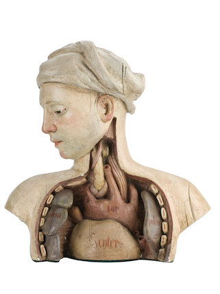 Statue showing a dissected chest, by Christopher Hobbs, 1970.