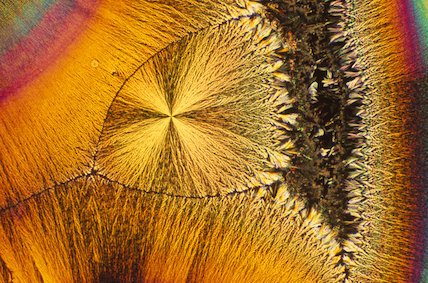 Ascorbic Acid Crystals