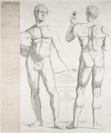 Table 1 from 'Nouvelle Description Anatomique', Paris, France, 1678.