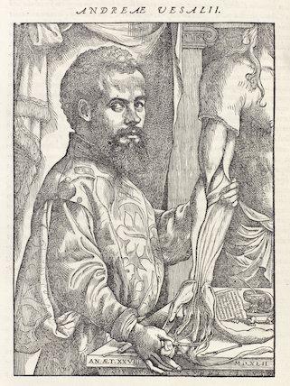 Woodcut of Andreas Vesalius, 1555.