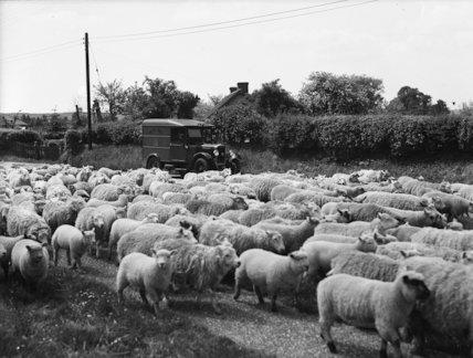Winchester - near Broughton   - 1937