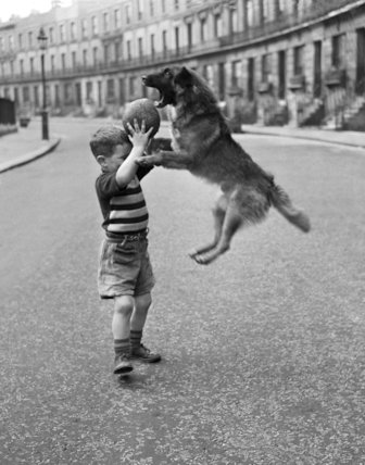 Boy and dog play football