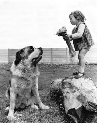 Girl delivering bone to dog