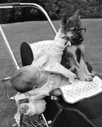 Baby and Alsatian puppy