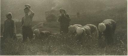 'Field Workers'