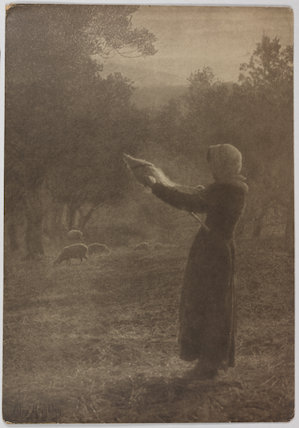 'The Shepherdess'