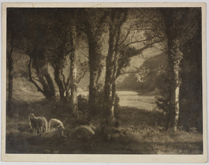 'An Irish Idyll' or 'Spring Pastoral, Ireland'