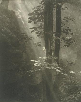 'A Gleam of Light', 1929