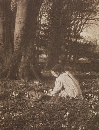 'Frühlingsangfang'