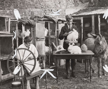 Farm making Angora rabbit wool garments, 1935