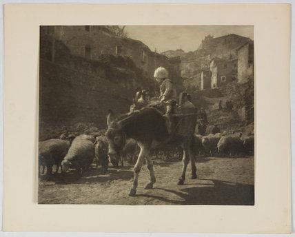 'The Little Shepherd'