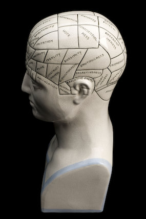 Phrenological head, United Kingdom, 20th century.
