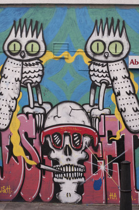 Graffiti of owls and a skull by Dscreet