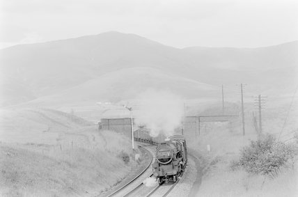 A steam locomotive hauling a goods train, passing under a bridge,A1969.70/Box 5/Neg 1235/30
