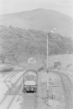 A type 40 diesel locomotive pulling a passenger train, head on view from overbridge,A1969.70/Box 5/Neg 1247/29