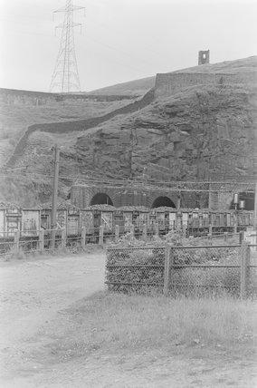 Photographic negative taken by John Clarke of goods wagons,A1969.70/Box 5/Neg 1248/9