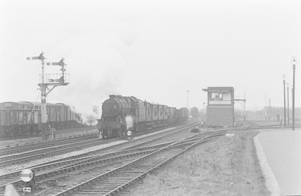 A steam locomotive hauling a goods train,A1969.70/Box 5/Neg 1252/4