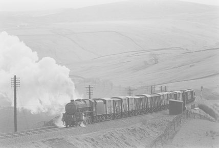 A steam locomotive hauling a goods train in the countryside,A1969.70/Box 5/Neg 1255/27