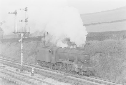 A steam locomotive in a rural landscape,A1969.70/Box 5/Neg 1259/3