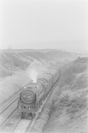 A steam locomotive hauling a goods train in cutting. ,A1969.70/Box 5/Neg 1271/5