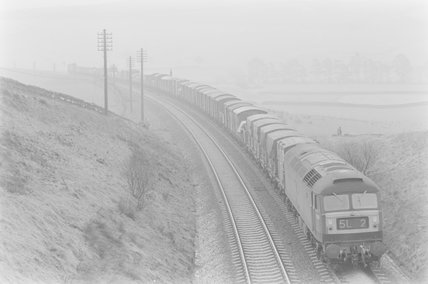 A diesel locomotive hauling goods train 5L6, entering a cutting.,A1969.70/Box 5/Neg 1271/6