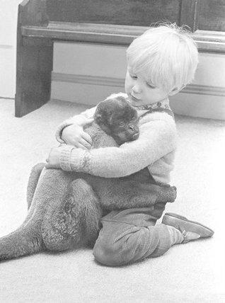Humboldt wooley monkey and boy