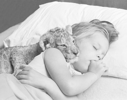 Girl sleeping with lion cub