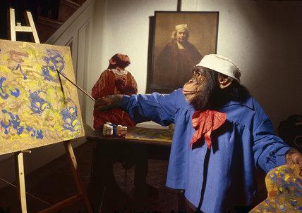Rembrandt chimp